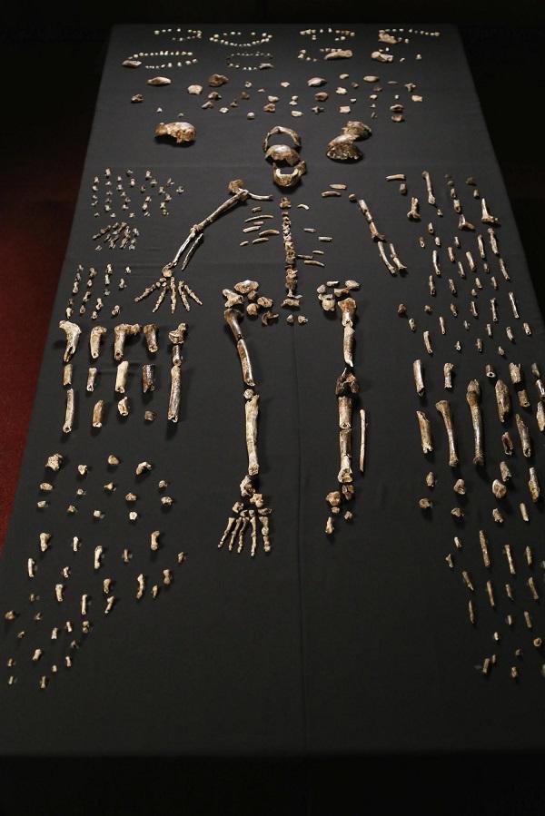 ilk insan kemikleri